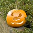 Pumpkin outside the house - Stock Photo