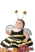 The girl in a costume of a bee — Stock Photo