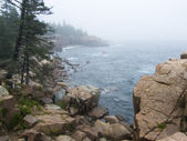 Coast of state of Maine, the USA, Acadia — Foto de Stock