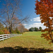 Autumn Landscape with a typical American — Stock Photo