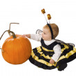 Girl dressed as bees delightfully touch — Stock Photo