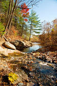 River in the mountains in autumn — Stock Photo