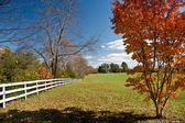 Autumn Landscape with a typical American — Foto de Stock