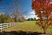 Paesaggio autunnale con un tipico americano — Foto Stock