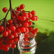 Cranberry and water - Stock Photo