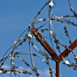 Barbed wire fence — Stock Photo #1240741