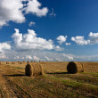 Hay roll and clouds - Stock Photo