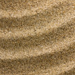 Stock Photo: Sand Ripples