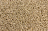 Texture of sea sand — Stock Photo
