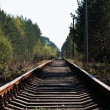 Railway in wood — Stock Photo #1367488