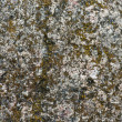 Royalty-Free Stock Photo: Rock texture