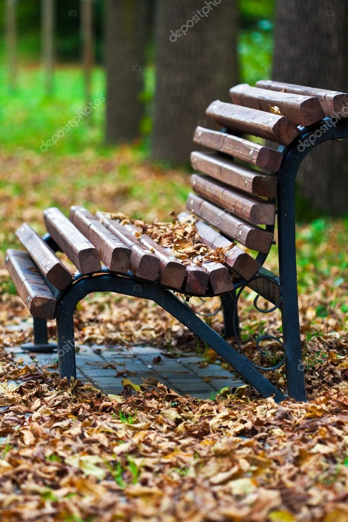 Bench in the park covered in autumn leaves — Stock Photo #1448272