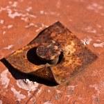 ������, ������: Rusted Iron Nail
