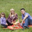 Family having picnic in countryside — Foto de Stock