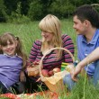 Foto Stock: Family having picnic in park