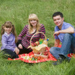 Family having picnic in park — Stock Photo #1171796