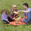 Family having picnic in park — Lizenzfreies Foto
