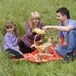 Family having picnic in park — Stock Photo