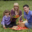 Family having picnic in park — Stock Photo #1171941