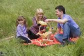 Family having picnic in park — Stok fotoğraf