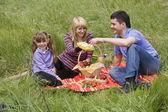 Família fazendo um piquenique no parque — Foto Stock