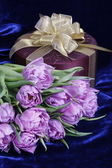 Gift. Light violet tulips purple box — Stock Photo