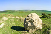 Rural landscape with big stone — Stock Photo