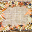 Decorative floral autumn frame — Stock Photo