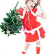 Funny mrs. Santa with Christmas tree — Stock Photo