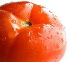 Tomat — Stock Photo