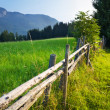 Stock Photo: Alps traditional landscape