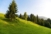 Alps morning landscape — Stock Photo