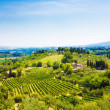 Traditional Toscana Italy landscape — Stock Photo #1328863
