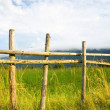 Small wooden fence — Stock Photo