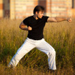 Young athletic man martial art training — Stock Photo