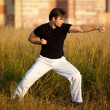Young athletic man martial art training — Stock Photo #1369055