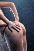 Sexy woman back — Stock fotografie