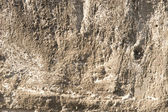 Rough bumpy old concrete texture — Stock Photo