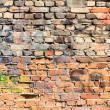 Multicolored wall — Stock Photo