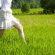 Girl walking on a field — Stock fotografie