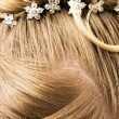 Woman hair with hair-pins — Stock Photo