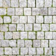 Stone pavement with green grass — Stock Photo