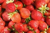 Strawberries background — Stock Photo
