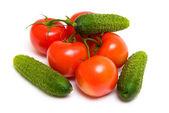 Ripe tomatos and cucumbers — Stock Photo
