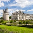 Chenonceaux castle in France - Stok fotoğraf