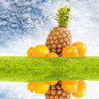 Pineapple and oranges - Stock Photo