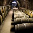 Wine barrels in cellar — Stock Photo