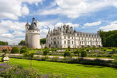 Chenonceaux castle in France — Stockfoto