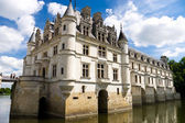 Chenonceaux castle on water — Stock fotografie