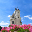 Chenonceaux castle in France - Stock Photo